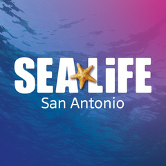 Sea Life Aquarium San Antonio