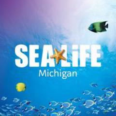 Sea Life Aquarium Michigan