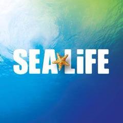 Sea Life Aquarium New Jersey